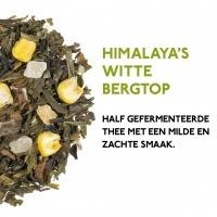 product_thee_groene_thee_pakket_himalaya_s_witte_bergtop_1024x1024