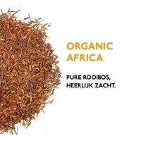 product_thee_rooibos_thee_pakket_organic_africa_1024x1024